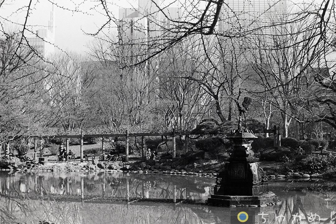 日比谷公園の雲形池