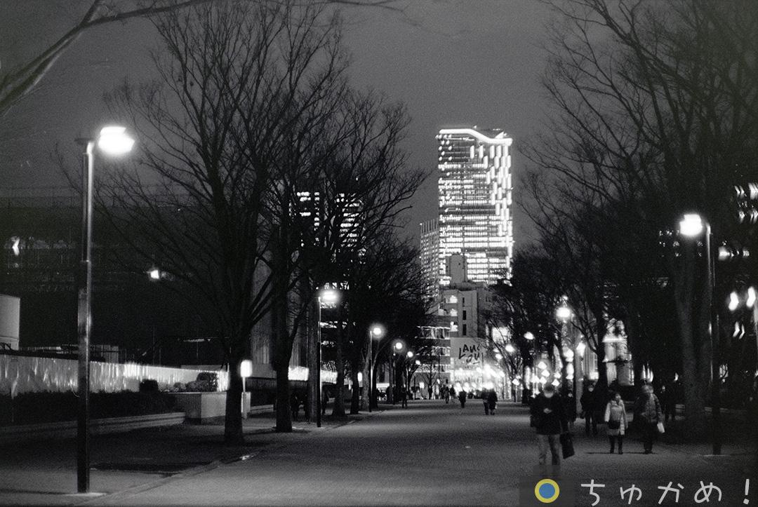 夜の代々木公園